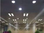 浦东新区花木路金融广场